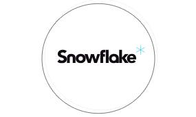 logiciel snowflake pour écran tactile